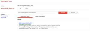 Google Structured Data Testing Tool 2013-05-08 21-45-50